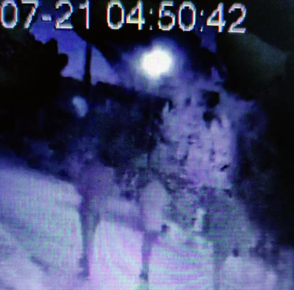 """Raid dei ladri a Venafro, banda """"fotografata"""" e messa in fuga"""