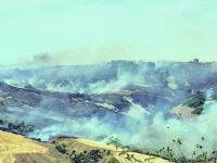 Il Molise continua a bruciare: 'inferno' tra Pietracupa, Salcito e Fossalto