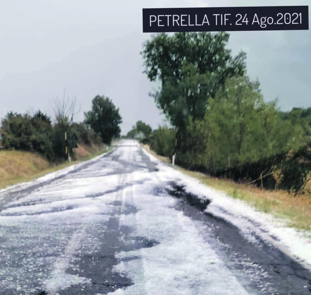 Vigneti e ulivi distrutti, a Petrella Tifernina inizia la conta dei danni