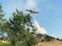 150 ettari di vegetazione in fumo tra Abruzzo e Molise