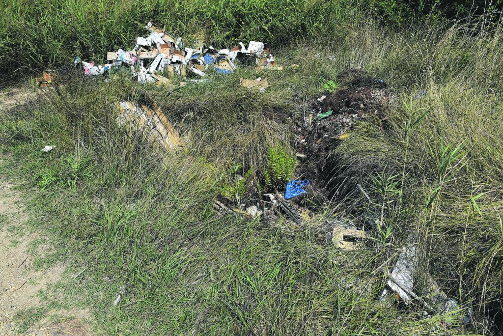 Termoli, territorio senza controllo: discariche abusive proliferano sotto i viadotti